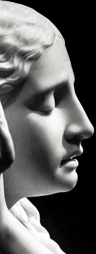 testa-laterale